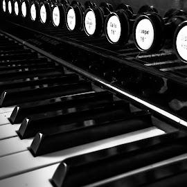 Harmonium by Sondre Gunleiksrud - Artistic Objects Musical Instruments ( music, canon, black background, blackandwhite, hdr, black and white, organ, instrument, norway )