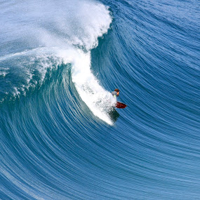Bodyboarding by Yuriko David - Sports & Fitness Surfing
