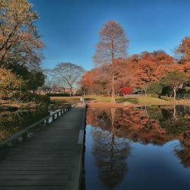 Shinbayashi Park by Nurul Anwar - City,  Street & Park  City Parks