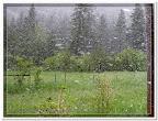 Spring snow storm near Bonner, Montana