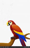 Screenshot of اصوات الطيور - Birds Sounds