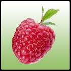 Bilingual Alphabet AtoZ Fruits icon