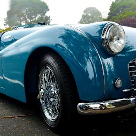 Triumph by Jeanne Knoch - Transportation Automobiles (  )