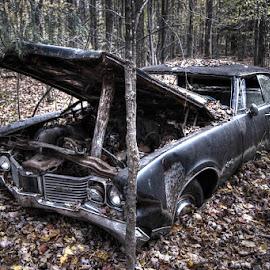 Le retraité by Sédrick Proulx - Transportation Automobiles ( optik photo,  )