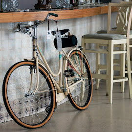 New bicycle by Carla Coanda - Transportation Bicycles ( chair, resting, chairs, beautiful, art, inside, artistic, sport, artistic object, restaurant, bar, bicycle,  )