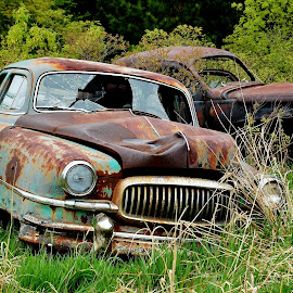 Rusty Metal by Erin Czech - Transportation Automobiles ( field, old, cars, rusty, junk, abandoned )