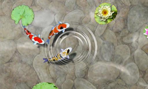 私の魚の餌