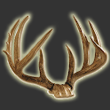 Deer Score & Field Aging Guide icon