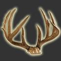 Deer Score & Field Aging Guide