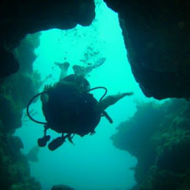 Exploring the beautiful world below by Sheri LoCascio - Landscapes Underwater