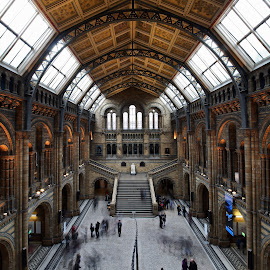 slow motion at NHM by Almas Bavcic - Buildings & Architecture Other Interior