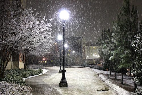 The Yearly Snowfall by Brianne Cronenwett - Novices Only Landscapes ( snowfall, college, alabama, tuscaloosa, lamps, snow, lamp, path, buildings, night, lamp post, lamp posts, sidewalk, campus, city at night, street at night, park at night, nightlife, night life, nighttime in the city,  )