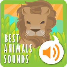 Best Animals Sounds