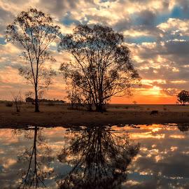 Change of Season by Thys Du Plessis - Landscapes Sunsets & Sunrises