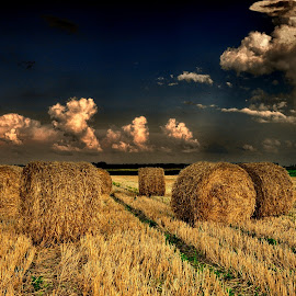Waiting for the rain by Manuela Dedić - Landscapes Prairies, Meadows & Fields ( clouds, straw, rain )
