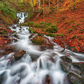 Autumn Colors by Hasim Sahin - Landscapes Waterscapes ( bolu, yedigöller, waterfall, fall, turkey )