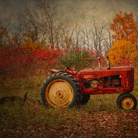 Harvest Tapestry by Kristina Austin Scarcelli - Transportation Other ( fall in michigan, michigan in autumn, vintage tractor, tractor, fall color,  )