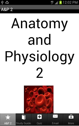 Anatomy Physiology 1