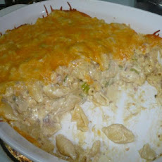 Creamy Tuna and Shells Casseroles
