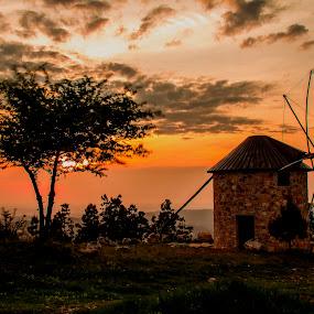 Windmill by Nuno Miguel Valente - Landscapes Sunsets & Sunrises ( moinho, penacova, sunset, lorvão, windmill )