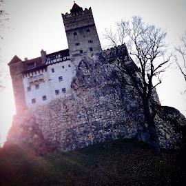 Sunshine over Dracula's Castle by Ovidiu Tomescu - Instagram & Mobile Instagram ( dracula,  )