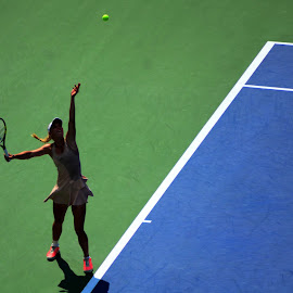 The Serve by Lorraine D.  Heaney - Sports & Fitness Tennis