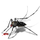 Pest Control icon