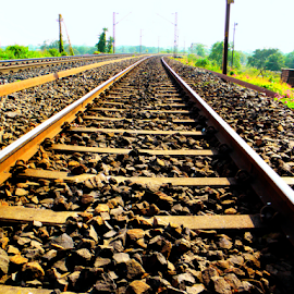 Railway Tracks by Dola Soma Sekharam - Transportation Railway Tracks ( railways, transportation journey travel, tracks,  )