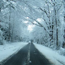 Snow covered  country road by Teresia Foreman - Landscapes Weather (  )