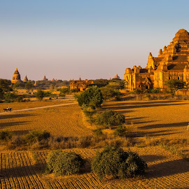 Stupa-fying architecture in Myanmar by Mike O'Connor - Buildings & Architecture Places of Worship ( religion, old bagan, myanmar, stupas, buddhist )