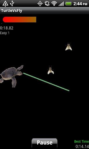 Turtle Vs Fly