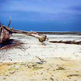 In Progress by Mari du Preez - Transportation Boats ( dhow, zanzibar, blue, sea, ocean, beach, landscape, island )