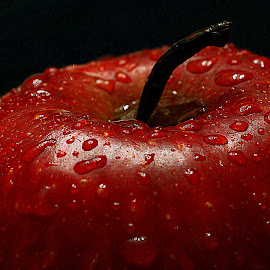 red apple by Andrew Piekut - Food & Drink Fruits & Vegetables