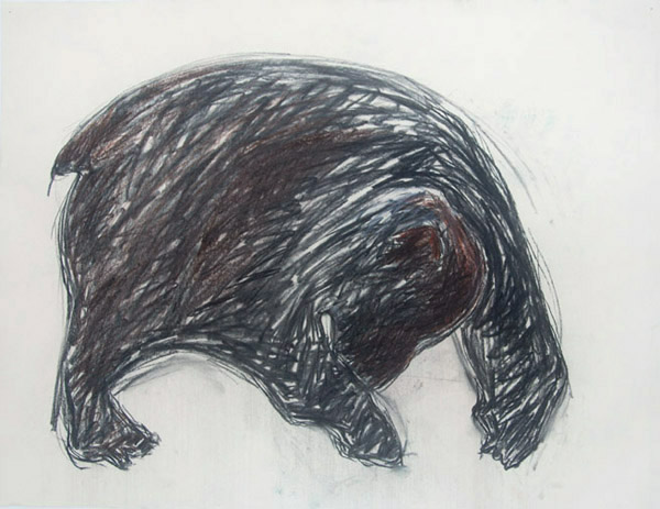Bear # 1 <br> Pastel on paper <br> 18 x 23.5 in