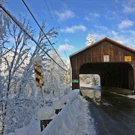 Bridgescape by Mark Mynott - Buildings & Architecture Bridges & Suspended Structures ( bucolic, picturesque, sky, morning light, covered bridge, snow, trees, road, bridge, country )