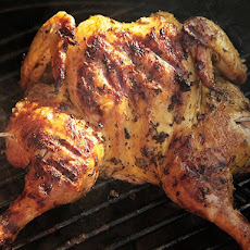 Grilled Butterflied Chicken