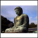 Buddhism Pocket Guide & Quiz icon