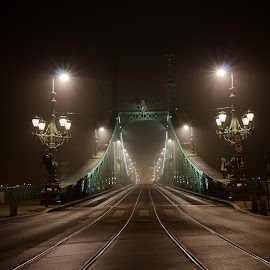 by Flori Popa - Buildings & Architecture Bridges & Suspended Structures ( budapest, night photography, bridge )
