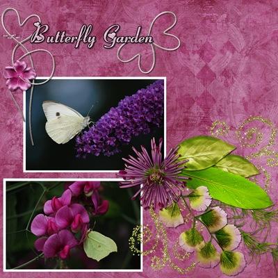 butterfly garden1