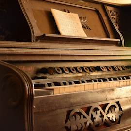 Old Piano by Laurent Jacquemyns - Artistic Objects Antiques ( old, musical instrument, piano, wood, abandoned )