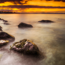 Portobello Sunset x by Don Alexander Lumsden - Landscapes Waterscapes