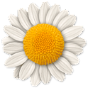 Step Flowers icon