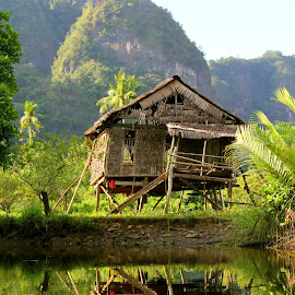 Mountain Lodge by Jesson Juanadi - Buildings & Architecture Decaying & Abandoned ( reflection, paddy field, gubuk, sulawesi, indonesia )