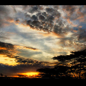 Landscape silhouette  by Samaneethi Krishnan - Landscapes Sunsets & Sunrises ( woodlands, dusk, singapore,  )