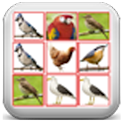 Birds Breaker icon