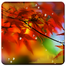 Autumn Music Live Wallpapers