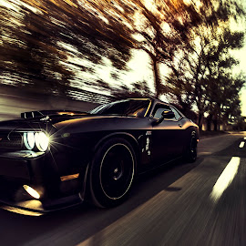 Dodge Speeding by Ervin Boer - Transportation Automobiles ( car, speed, rig, dodge, srt )