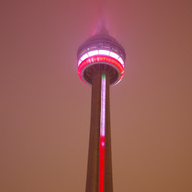 Toronto Landmark by Kim Dawson - Buildings & Architecture Other Exteriors