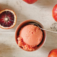 Blood Orange Sorbet Recipe