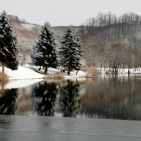 JEZERO by Zeljko Sajko-Saja - Nature Up Close Water ( stablo, priroda, drvo, voda, HDR, Landscapes, snow, winter, cold,  )